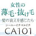 CA101