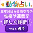 動物占いR 324円コース