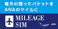 MILEAGE SIM