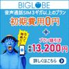 BIGLOBE LTE・3G 音声通話SIM