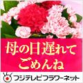 フジテレビフラワーネット(定額)