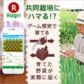 Ragri(ラグリ)