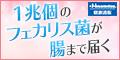 Hisamitsu 乳酸菌EC-12 顆粒タイプ