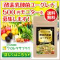 酵素乳酸菌ユーグレナ 500円モニター