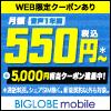 BIGLOBE モバイル SIM